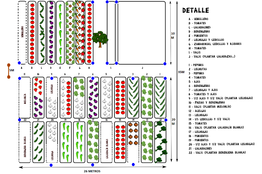 Distribución huerto urbano